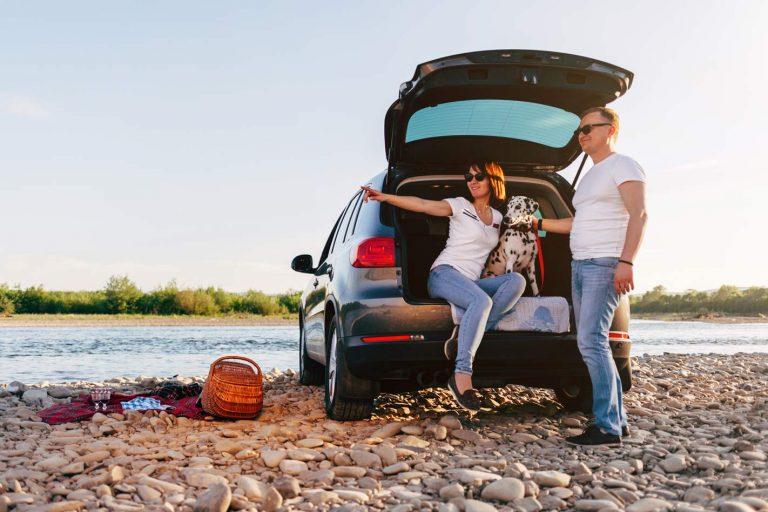 Consigli utili per il trasporto di animali e bagagli